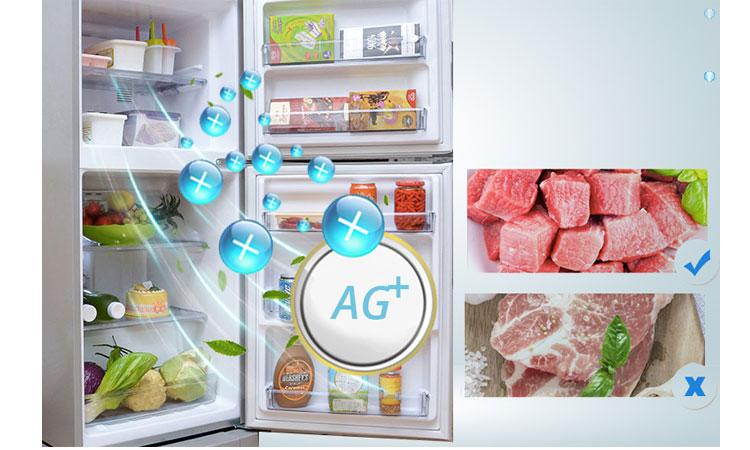 Tủ lạnh Panasonic NR-BJ188SSVN kháng khuẩn khử mùi hôi hiệu quả